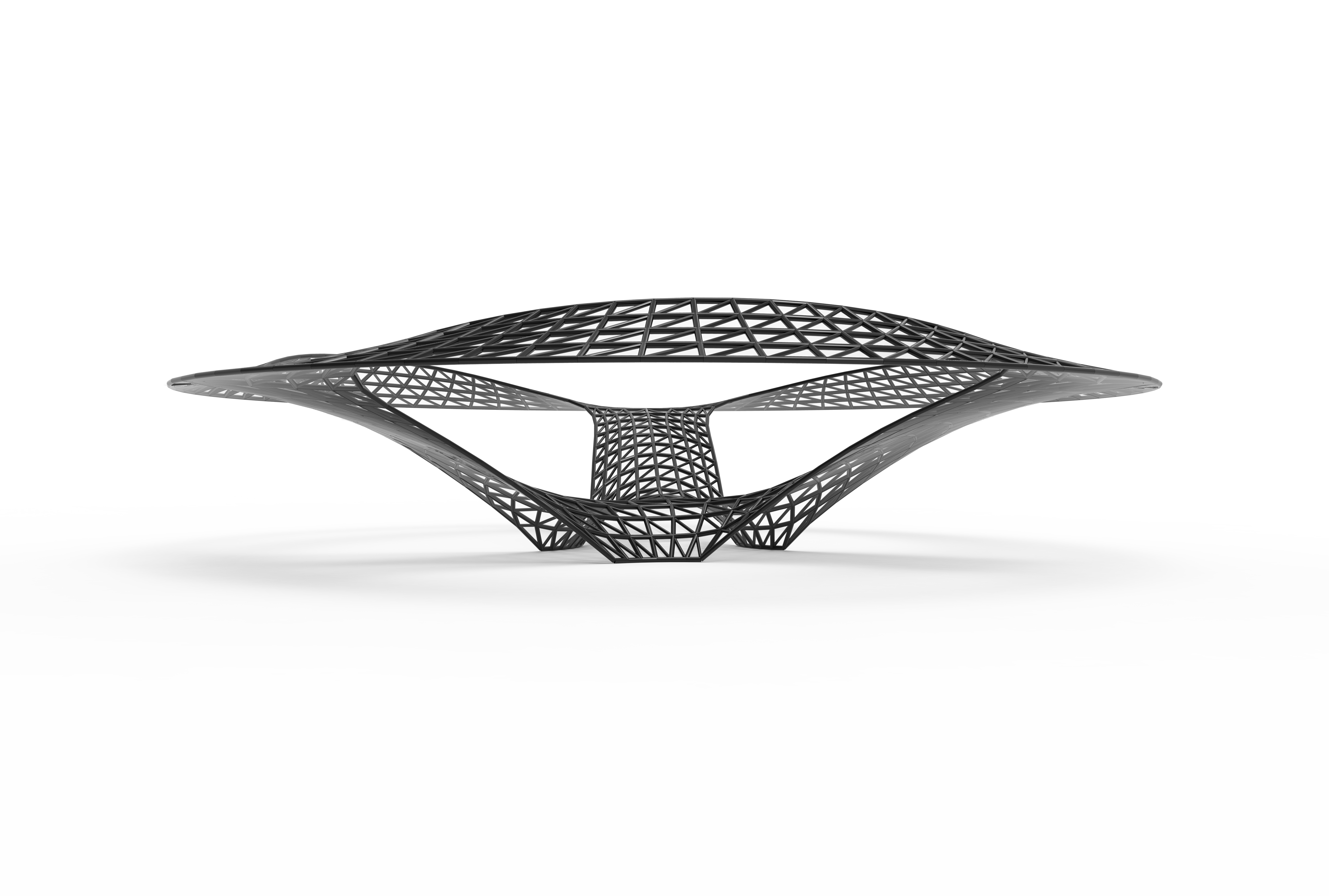project-main-webinar-form-finding-structural-optimization